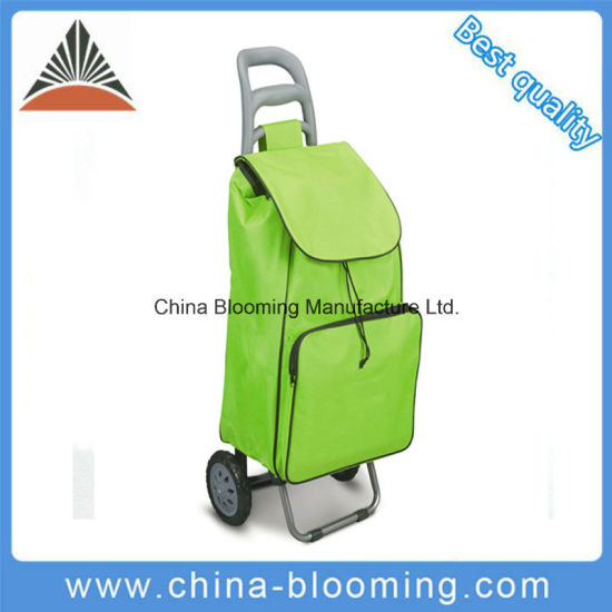 Lightweight Trolley Carry Cooler Ice Pull Shopping Luggage Bag pictures & photos