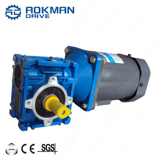 CE Approved RV Series Blue Worm Gearbox with Motor Combination