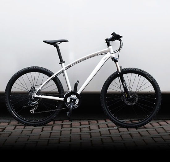 24 25.5 27 Inch Bicycle OEM Manufacturer 21 Speed Aluminum Alloy Mountain Bike Bicycle pictures & photos
