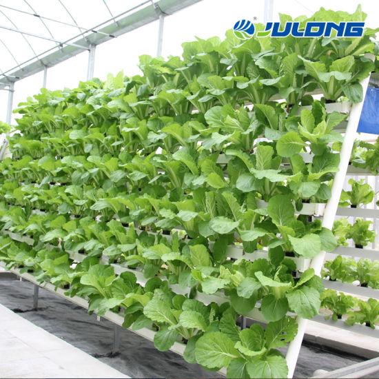 Indoor Vertical Planting Nft Hydroponics System for Sale