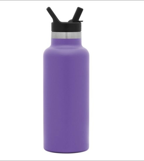 17oz Double Wall Stainless Steel Insulated Water Bottle with Lid