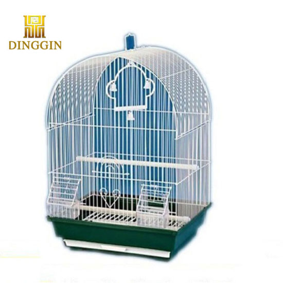 Bird Cages for Sale in Pakistan
