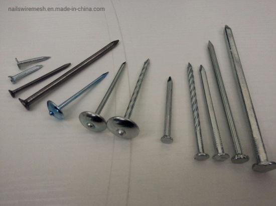 Cheap Concrete nails/Steel concrete nails/Clavos de concreto