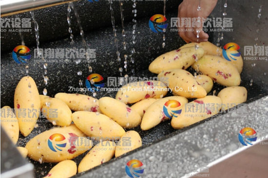 Factory Price Brush Type Peeler Lotus Root /Potato/ Ginger/ Carrot Washer and Peeler with Ce Approved pictures & photos