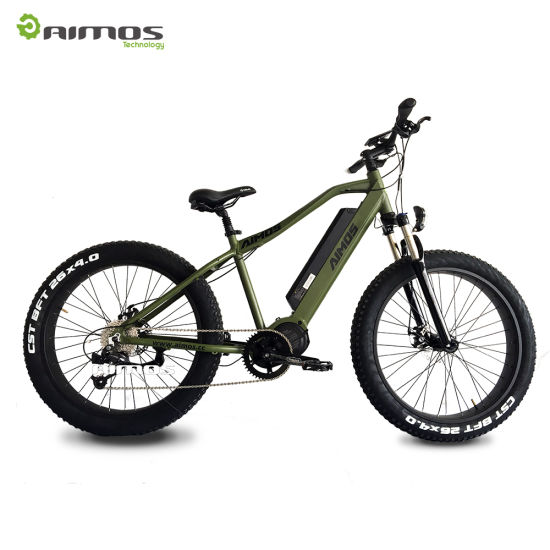 48v 1000w Mid Drive Electric Mountain Bike Fat Tire E Off Road