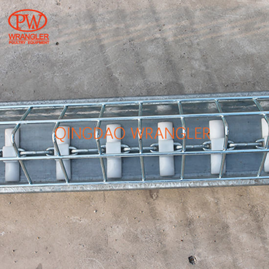 Poultry Broiler Breeder Open Trough Chain Feeding Line System