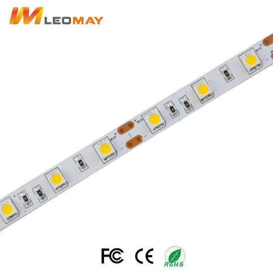 Top5 LED strip manufacture 5050 48LEDs 12V LED strip.