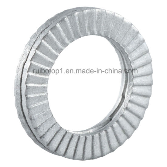 DIN25201 Stainless Steel / Dacromet Sk5 Dual-Stacked Spring Lock Washer pictures & photos