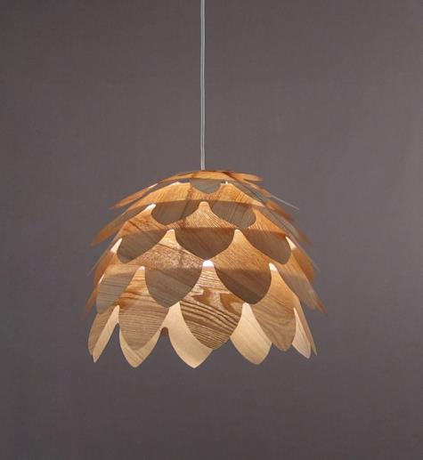 Pendant Lamp Indoor Ceiling Light