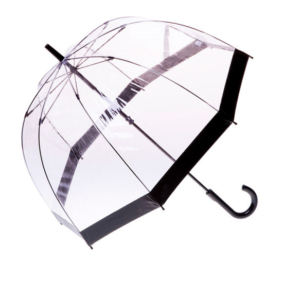 Plastic J Handle Poe Transparent Black Straight Umbrella (YZ-20-35)