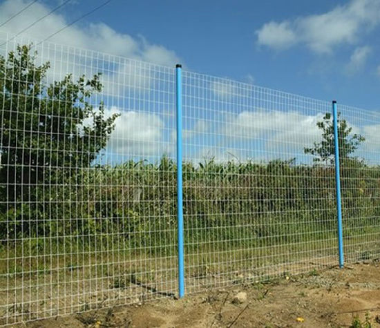 Welded Wire Mesh in Eurfence with PVC Coated pictures & photos