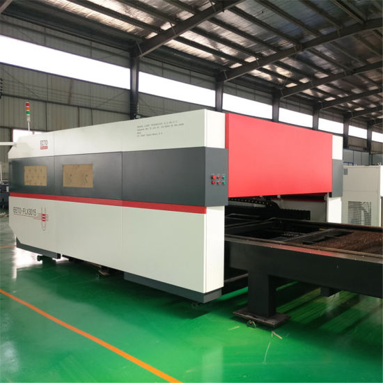 Third Generation 750W Raycus Fiber Laser Cutting Machine with Double Table pictures & photos