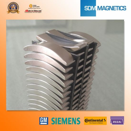 Rare Earth Large Neodymium Monopole Magnets for Sale pictures & photos
