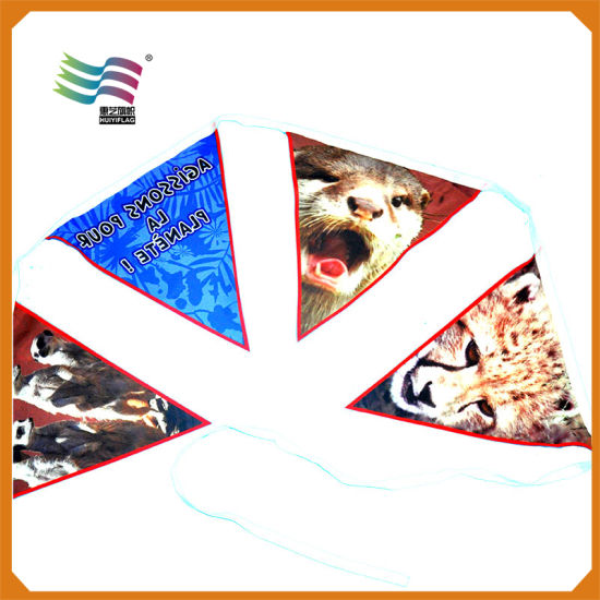 Christmas Fabric Bunting Banner with Custom Printed Design pictures & photos