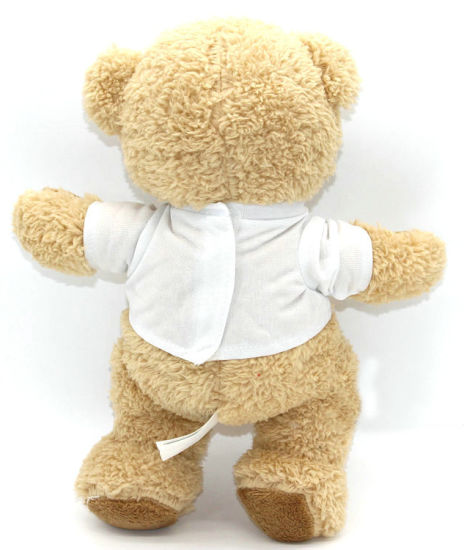 Customized Printed Logo T Shirt Plush Teddy Bear pictures & photos