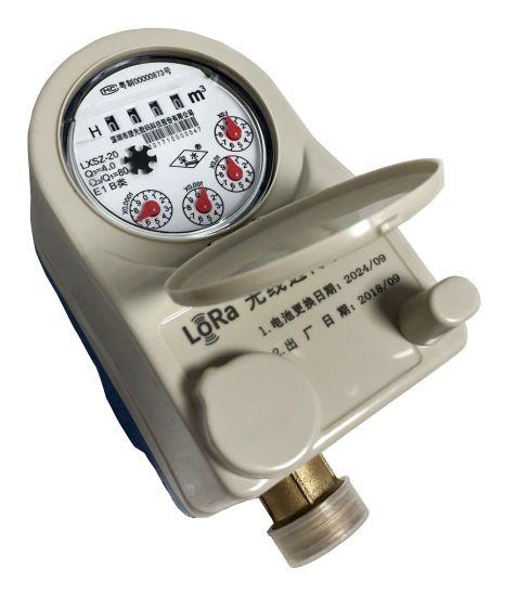 New Tech Remote Dry Direct Reading Lora Water Meter Lp Wan Flow Meter