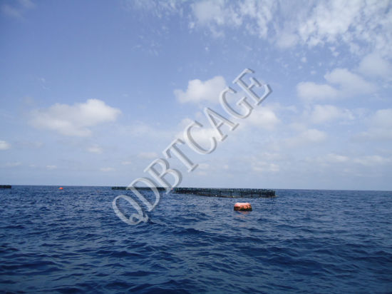 Aquaculture Circular Farming Fishing Cages pictures & photos
