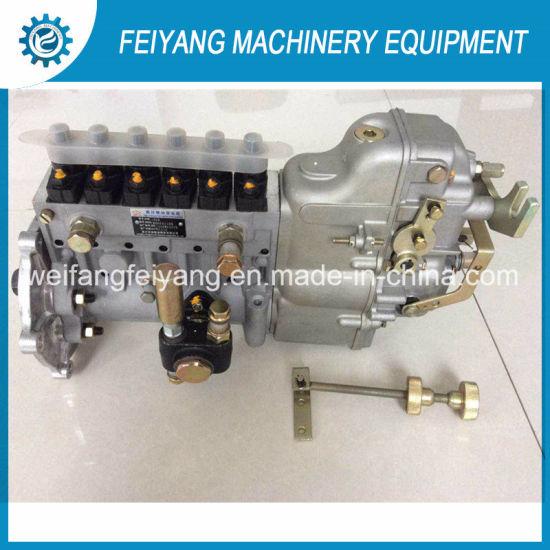 R6105izlp Engine Fuel Injection Pump Bh6PA110r 6pw1225-120
