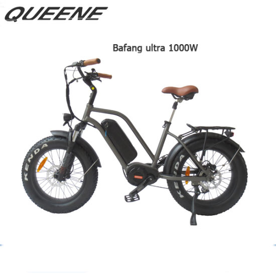 Queene/MID Drive with LCD Display Fat Tire Ebike for Performance Riding