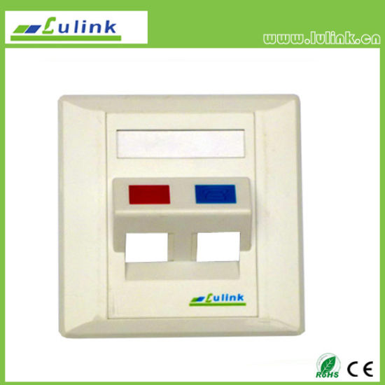 Hot Sale 86 Type 45 Degree Dual Port Network Faceplate