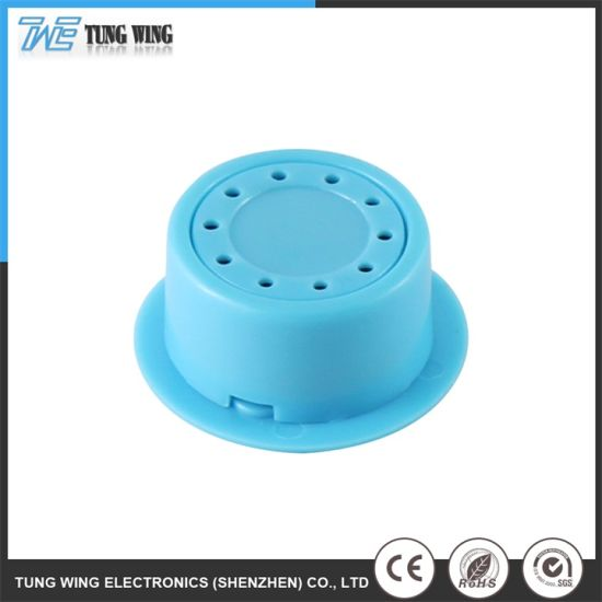 Customized Sound Module Toy Accessories for a Book