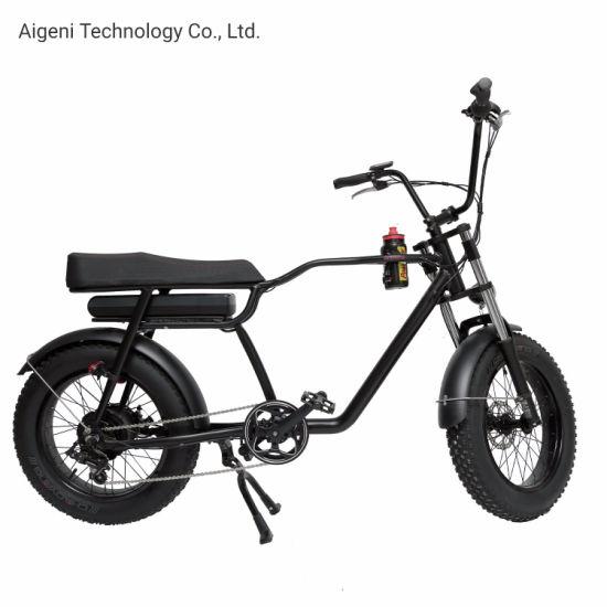 Fat Tyre 250W Electric Bike