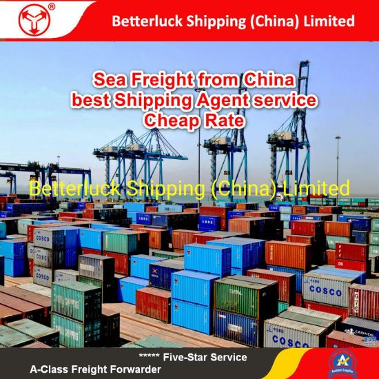 sea freight to Busan Korea from China Foshan shipping logistics services