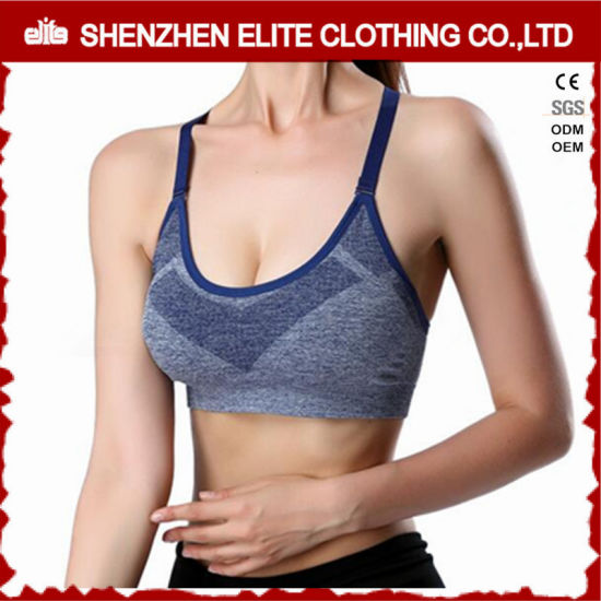 e40af3fd6 Wholesale Stylist Womens High Quality Sports Bra (ELTSBI-2) pictures    photos