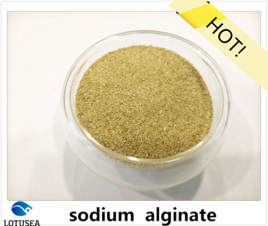 1400cps Thickening Agent Sodium Alginate Reactive Dye pictures & photos