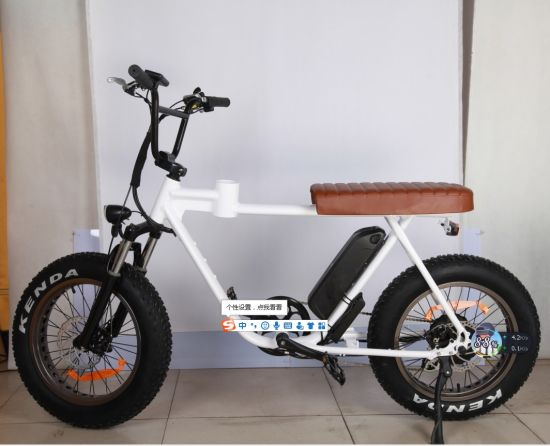 "Electric 20""Inch Mounatin Bike with 48V500W Built-in Bafang Motor"