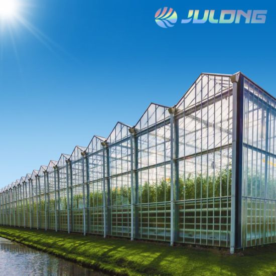 Bigger Size Hydroponics Nft Growing System Glass Greenhouse for Sale