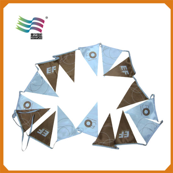 Promotion Custom Printed PVC Coloured Bunting Flags for Party pictures & photos