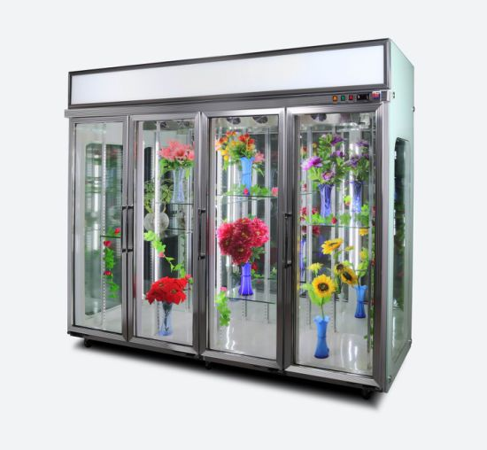 Flower Shop 4 Doors Flower Display Chiller