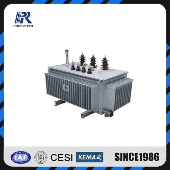 China High Quality Sh15 Wholly Sealed Amorphous Alloy Coil Three Phase Oil Immersed Power Transformer 30~2500kVA