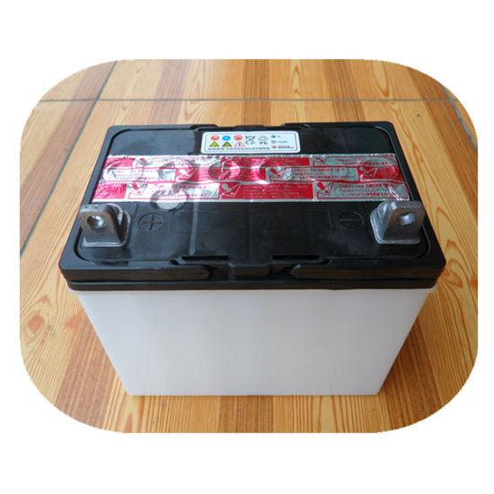 High CCA Performance U1l9 12V24ah Dry Charge Lawn Mower Batteries pictures & photos