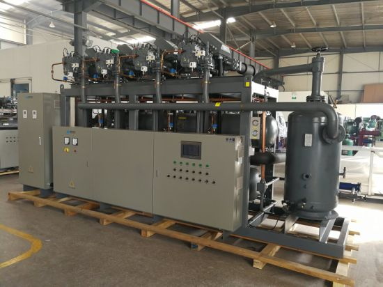 Parallel Screw Compressor Unit Used for Spiral Freezer