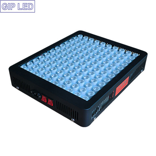 Gip Hydroponic Grow Systems 600W 9000W 1200W LED Grow Lights pictures & photos