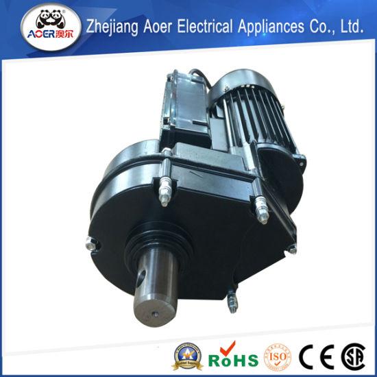 700W Variable Speed Low Rpm Gear Motor (YD8024-2)