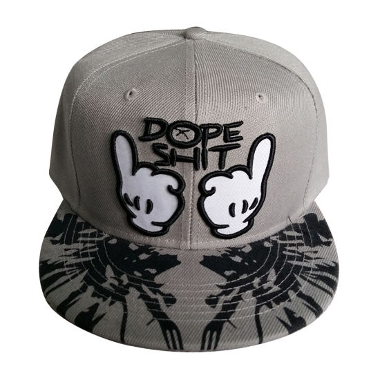 China Custom Fitted Snapback Cap with Nice Logo Sk1224 - China Cap ... e3a66ddf436