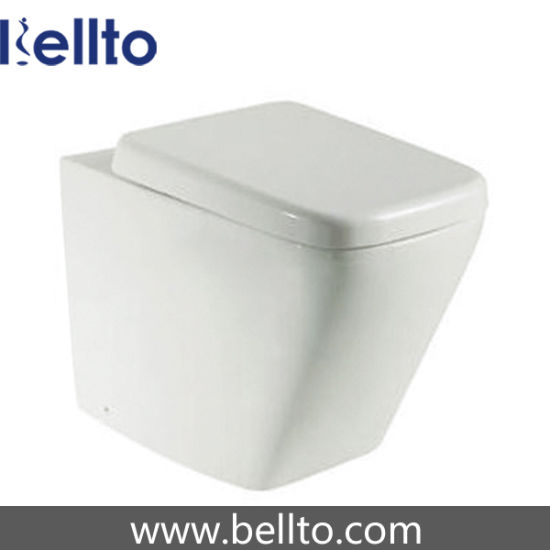 Ceramic Lavatory Toilet with Concealed Cistern (319B)
