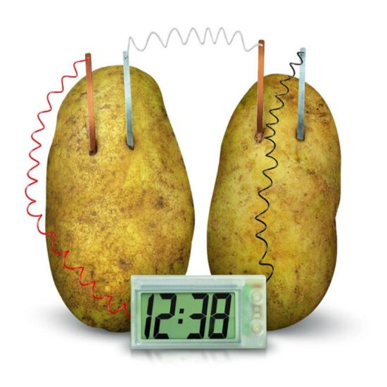 DIY Science Project Toy Potato Generator Clock Toy
