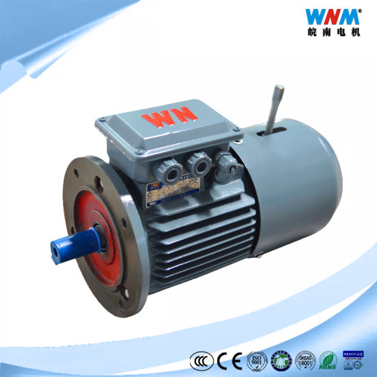 Yxej High Efficiency Three Phase AC Induction Electric Electromagnetic Brake Conveyor Belt Motor Power Calculation 0.18~200kw Yxej-80m2-2 1.1kw 2855rpm