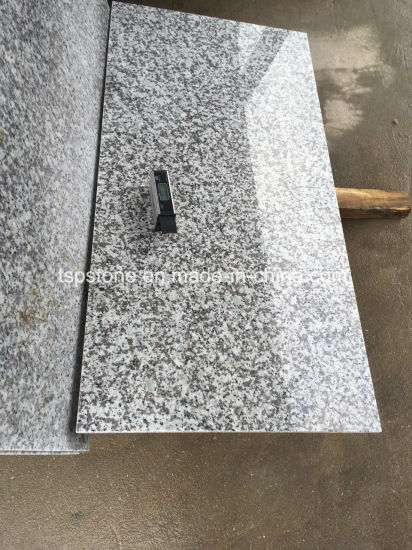 Chinese Granite G439 Granite Flooring Tile pictures & photos