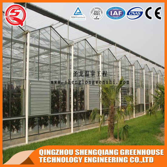China HDG Steel Frame Polycarbonate Sheet Greenhouse Vertical Hydroponic Farming Green House