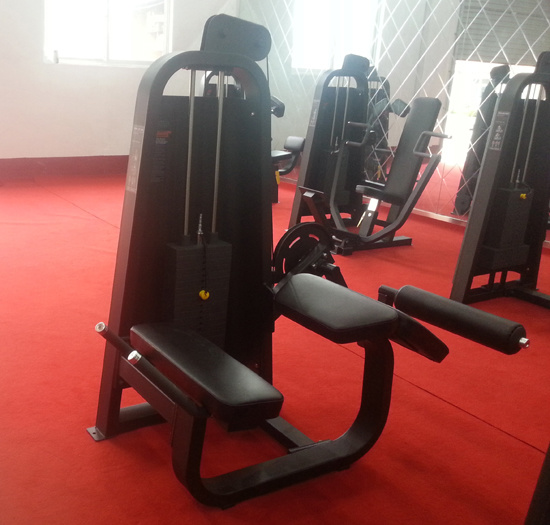 Excellent Precor Fitness Equipment / Adductor (SD11) pictures & photos