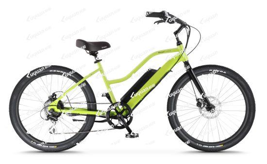 Step-Thru Cruiser Electric Bicycle Torque Sensor Frame Intergrated Lithium Battery (OC2)