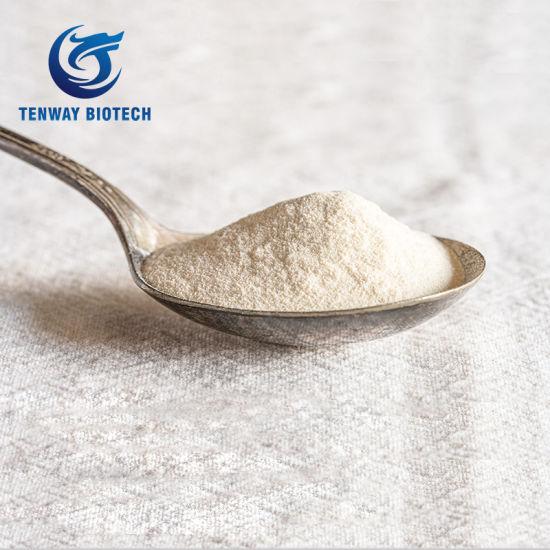 Industrial Grade Xanthan Gum Powder API Oil Drilling Grade at Factory Price
