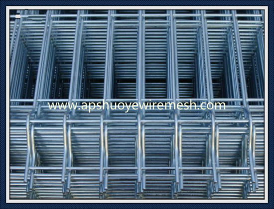 Galvanized Steel Welded Wire Mesh for Playground pictures & photos