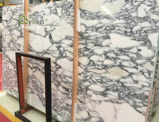 China Arabescato White Marble Slabs And Tile For Bathroom Vanity - Marble slab for bathroom vanity