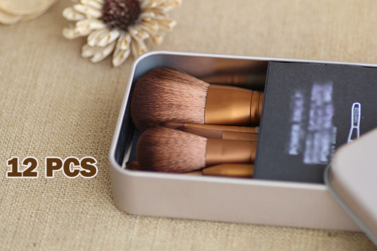 12PCS Professional Make up Brushes Set pictures & photos